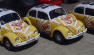 VW Beetles - wrapped by Totally Dynamic Norwich